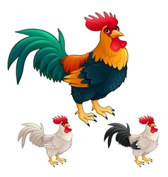 Group of funny roosters in different colors vector