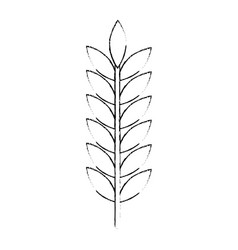 laurel leaf isolated icon vector image