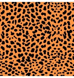Leopard Pattern A vector image vector image