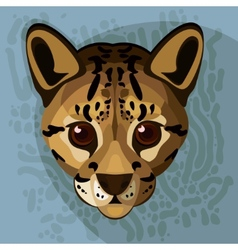 A of an ocelots face vector