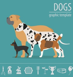 Dog info graphic template heatlh care vet vector