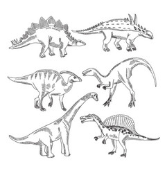 stegosaurus triceratops tyrannosaurus and other vector image vector image