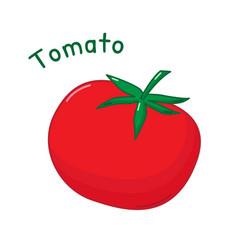 0050 tomato vector image vector image