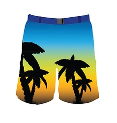 Man shorts vector