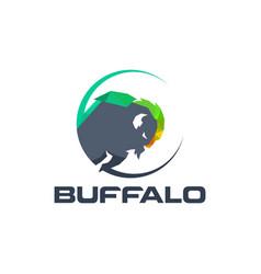 buffalo logo template vector image vector image