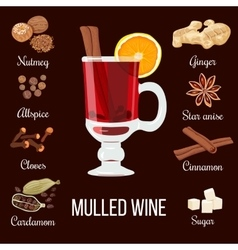 Mulled wine set with spices vector