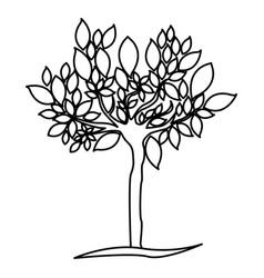 figure tree with many leaves icon vector image
