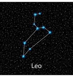 Leo Zodiac sign bright stars vector image