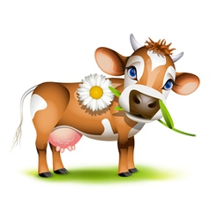 Little jersey cow vector