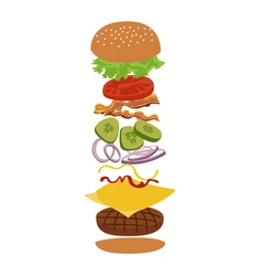 Burger and ingredients isolated infographics vector
