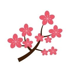 Realistic sakura japan cherry branch with blooming vector image