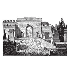 Street of tombs at pompeii smaller dimensions vector