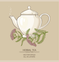 yarrow tea in teapot vector image vector image