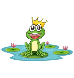 Frog and water vector