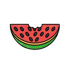 Watermelon icon image vector