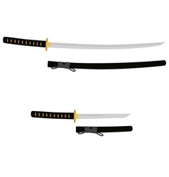 Tanto and katana sword vector