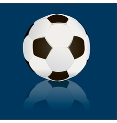 soccerball isolated vector image vector image