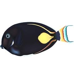 Black fish vector