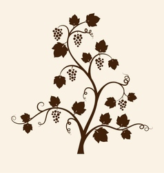 Grape vine silhouette vector image vector image