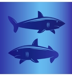 Two sharks in deep blue sea vector image vector image
