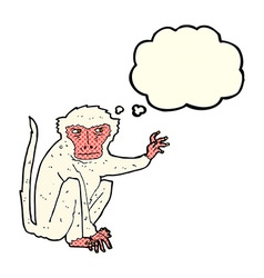 cartoon evil monkey with thought bubble vector image