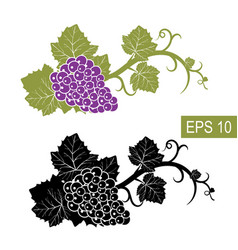 the grapes are symbols isolated signs vector image