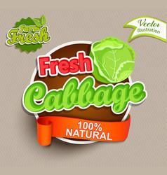 fresh cabbage logo lettering vector image