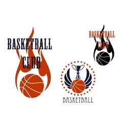 Basketball icons with winged balls and flames vector image