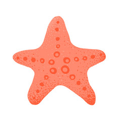 cartoon style grunge sea star isolated vector image