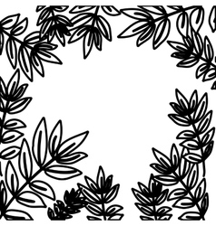 Isolated leaves frame decoration design vector
