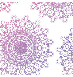 Pattern purple gradient brilliant flower mandala vector