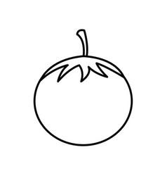 Silhouette vegetable tomato icon vector