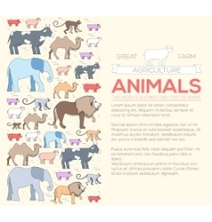 Animal concept of lion monkey monkey camel vector