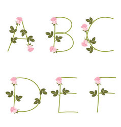 Floral alphabet pink roses from a to f vector