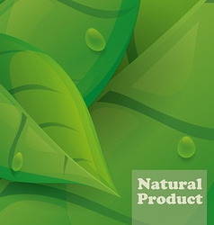 Natural product design vector