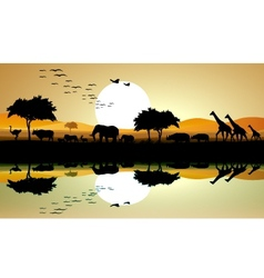 beauty silhouette of safari animal vector image