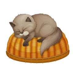 sleeping vector image