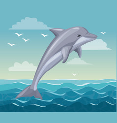 Colorful poster seaside with dolphin mammal in vector