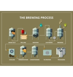 Brewery process infographic in flat style vector