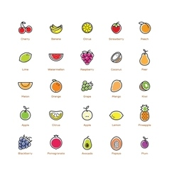 Fruit icons set colorful design vector