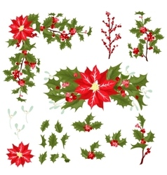 Christmas berry flower vector image vector image