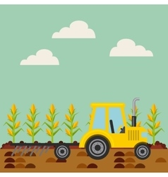 Corn harvest icon vector