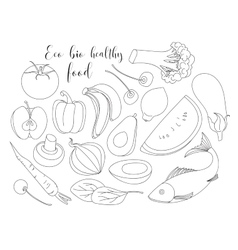 Various of hand drawn Eco bio healthy food vector image