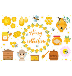 Honey collection beekeeping set of objects vector