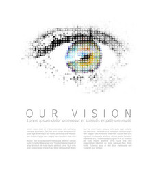 Our vision template vector