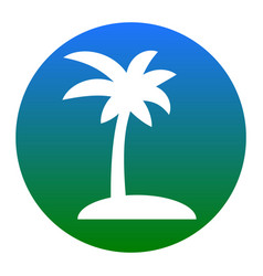 Coconut palm tree sign  white icon in vector