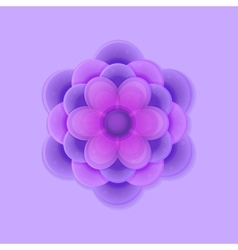 Lilac purple flower vector