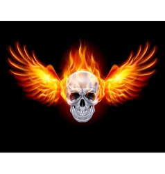 Flaming chrome metal skull wings fair 01 vector