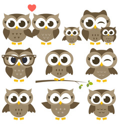 set of cute brown owls vector image vector image