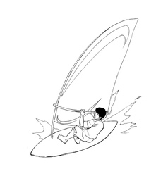 Wind surfer vector